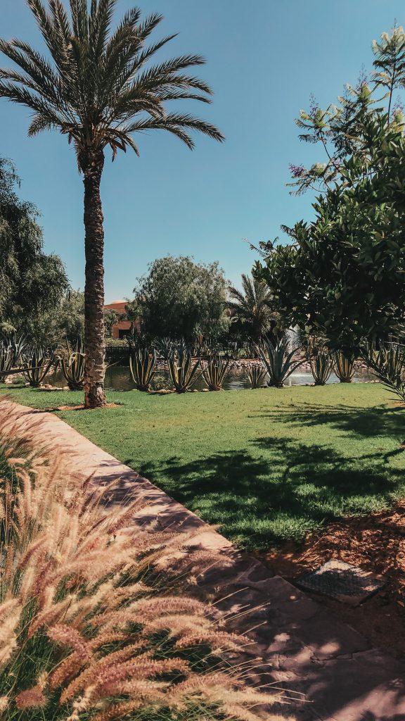 Marrakech Hotel Riu Tikida Palmerai